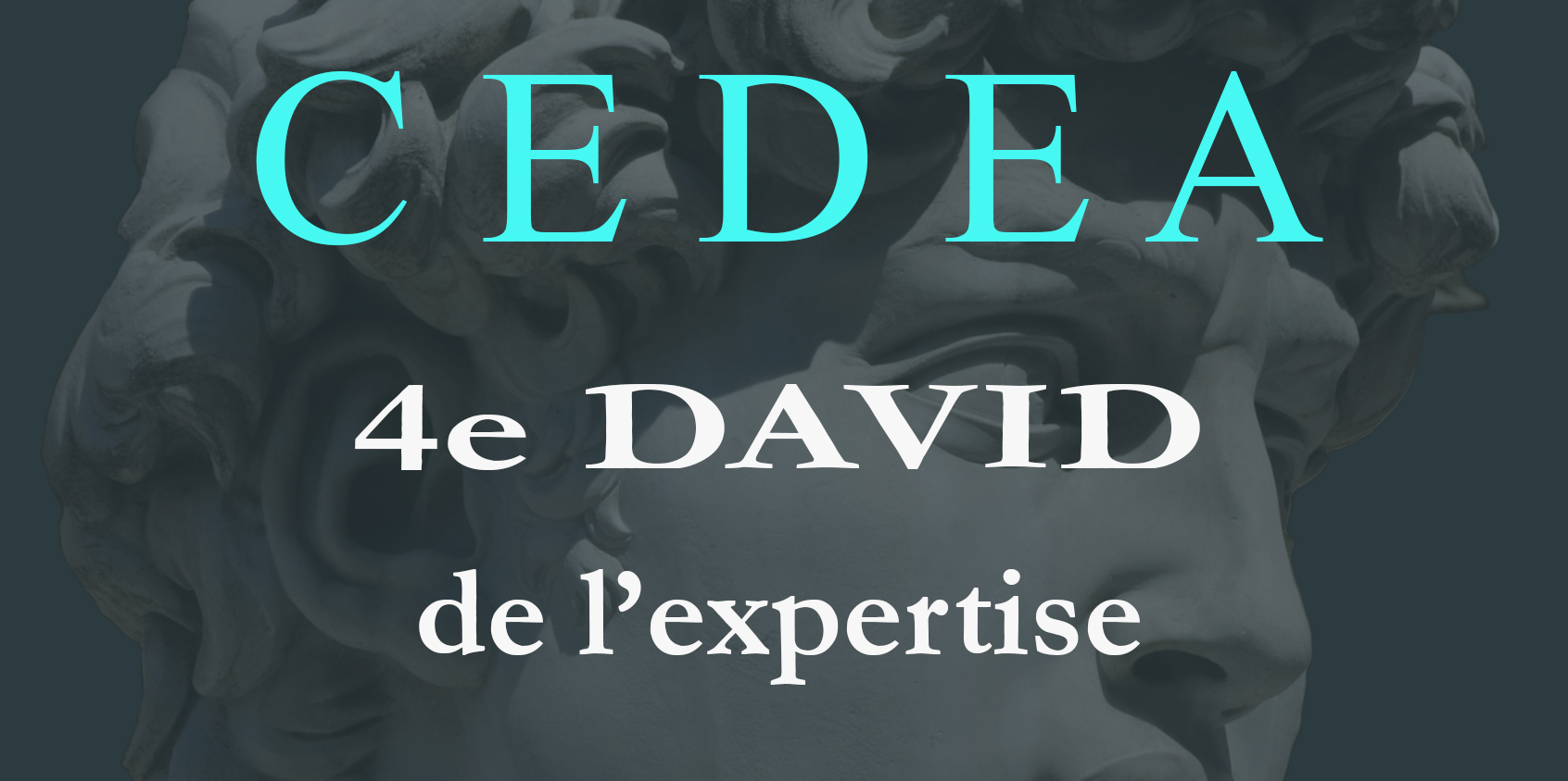 4ème DAVID de l'expertise